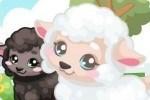 Prenditi cura dell'agnellino